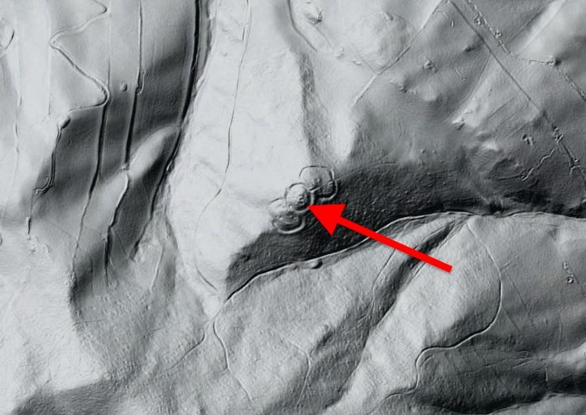 Na LIDARze widać trzy zachodzące na siebie okręgi (pozostałości wałów), w tym miejscu dawniej znajdował się zamek – Źródło: Geoportal.gov.pl