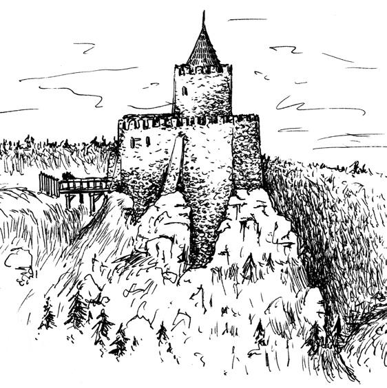 Rekonstrukcja wyglądu zamku w Borowym Jarze – Autor: Stanisław Firszt