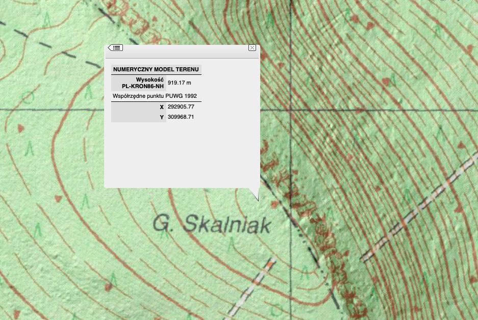 Skalniak według NMT posiada wysokość taką samą jak wysokość Szczelińca Wielkiego, która podawana jest na mapach – Źródło: geoportal.gov.pl