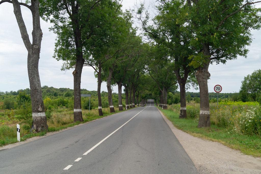 W większości przypadków po obwodzie kaliningradzkim prowadziły nas równe i szerokie drogi