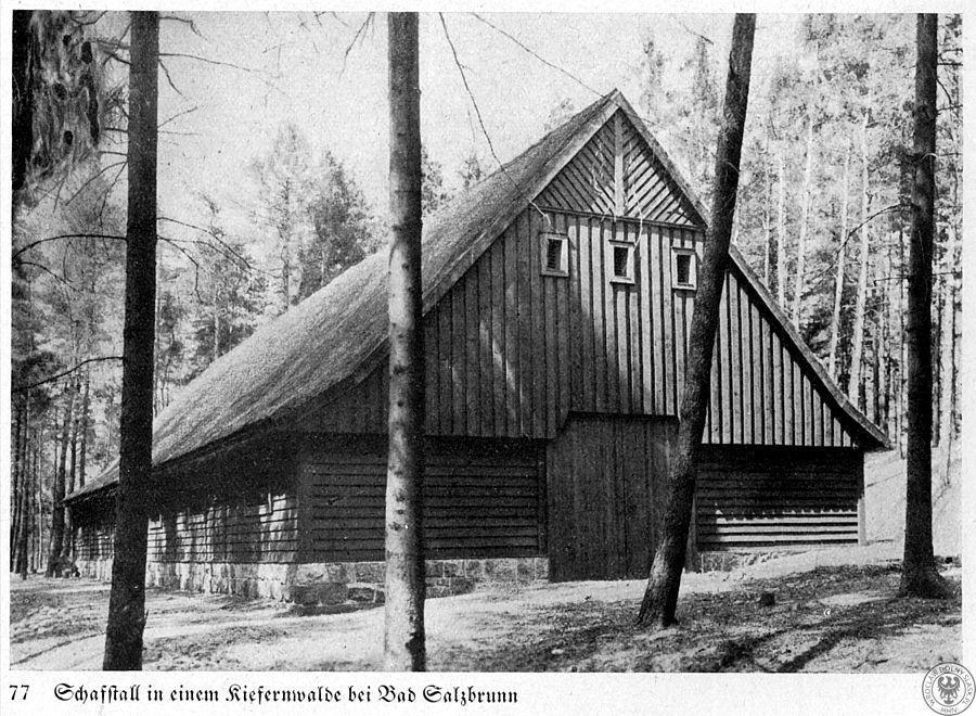 Południowo-wschodnie zbocza masywu zdobiła niegdyś owczarnia (po której pozostały jedynie trudne do odnalezienia resztki fundamentów) – Źródło: polska-org.pl