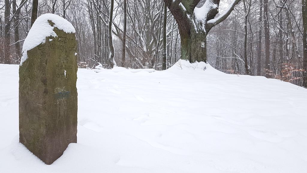 Szczyt Góry Parkowej zdobi kamienny słup z polską nazwą wzgórza